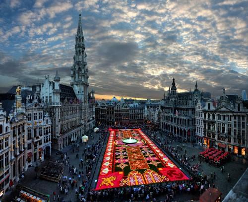 3. Цветочный ковер в Брюсселе