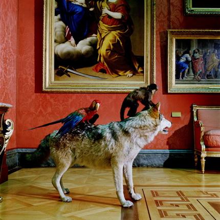 Wolf.tif
