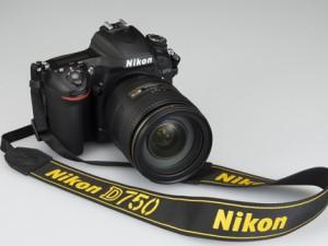 Nikon D4 (ISO 12800)