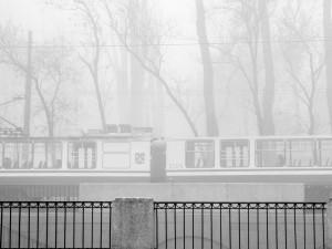 Выставка фотографий Александра Филиппова «Петербург. Косвенный взгляд»