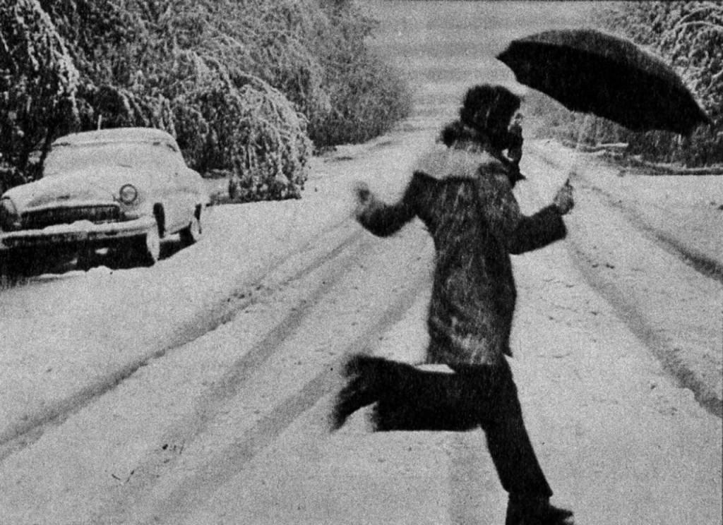 "С. Барков ""Летний снегопад"""