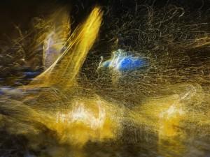 «Сияние жизни». Фотографии Акиры Утиямы.